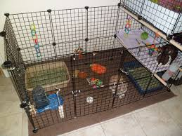 Homemade Rabbit Cage Pigs N Buns Small Pet Rescue House Hunters Small Pet Edition