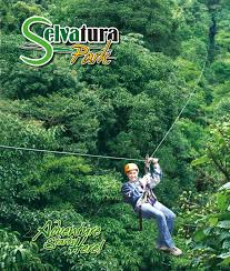 Treetop Canopy Tours by Monteverde Sloth Backpackers Bed U0026 Breakfast Zip Lines Above The