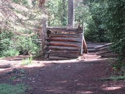 log cabins in spruce forest francine retirement cabin loversiq