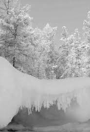 41 best winter images on snow winter snow and scenery