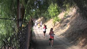 Mount Sac Map Mt Sac Cross Country Youtube
