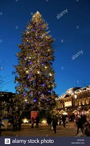 big tree in nycbig ornaments lots how are