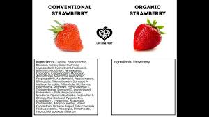 Organic Food Meme - organic vs conventional food difference youtube