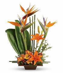 grace tropical flower arrangement with birds of paradise