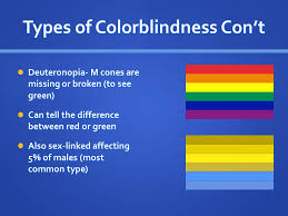 Most Common Type Of Color Blindness Colorblindness What Causes It And What It U0027s Like To Have It