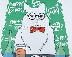 Science Birthday Meme - chemistry cat card etsy