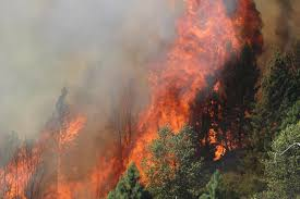 Wild Fires Near Merritt by Esa2014 Ecological Society Of America