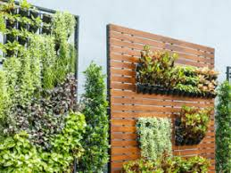 top wall garden designs inspiration for your space in and out