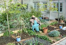 Small Vegetable Garden Ideas Pictures Small Vegetable Garden Design Ideas