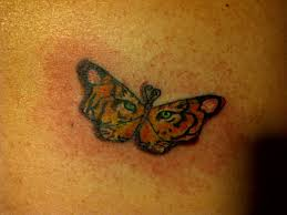 tiger butterfly by cheshirepinky on deviantart