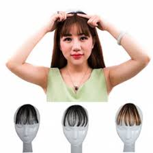 clip hair canada canada clip human hair extensions front supply clip human hair