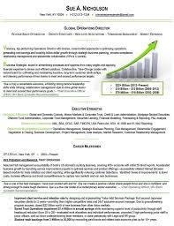 expert resume writing executive resume writer msbiodiesel us resume maker professional professional resume writing executive resume writer