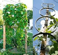 garden trellis designs u2013 exhort me