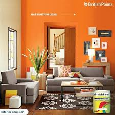 Living Room Colors Shades 28 Best Interior Elulsions Images On Pinterest Colors Colours