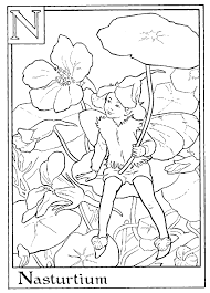 peachy design flower fairy coloring pages flower fairies coloring