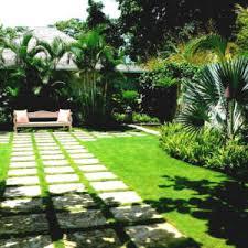 tropical garden ideas adelaide archives catsandflorals com