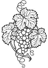 grape vine clip art cliparts co
