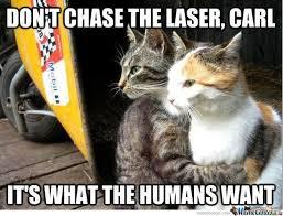 Cat Trap Meme - its a trap by ginger1993 meme center