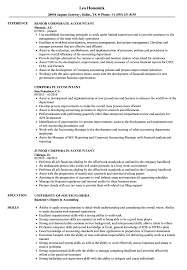sle resume templates accountants compilation report income corporate accountant resume sles velvet jobs