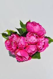 artificial peonies artificial peony single stem flower in pink headed