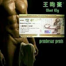 makanan pembesar otot pria klinikobatindonesia com agen resmi