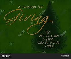 christmas giving tree image u0026 photo bigstock
