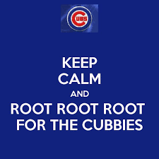 Cubs Toaster 27 Best Cubs Fever Images On Pinterest Chicago Cubs Cubs