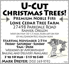 flyerboard lone cedar tree farm u cut christmas trees daily
