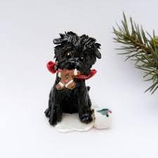 affenpinscher puppies florida 20110302 pyynosonia 1017 by silentsh0ut via flickr