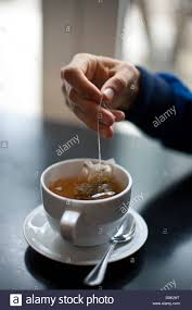 Cool Cup A Person Dipping Tea Bag Into Cup On A Cool Afternoon Stock Photo