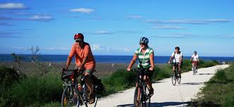 The New Zealand Cycle Trail Official Website Hawke U0027s Bay Trails Mountain Bike And Cycle Trail Guide