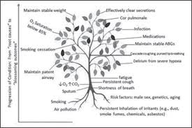 Concept Map Nursing Use Of The Knowledge Tree As A Mind Map In A Gerontological Course
