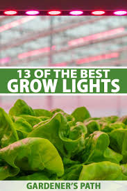 what is the best lighting for growing indoor 13 of the best grow lights for indoor gardens gardener s path