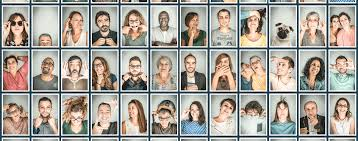 siege social maif pourquoi maif social maif social