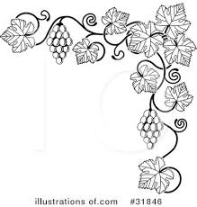 grapes tattoo design photo 3 real photo pictures images and