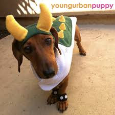 Halloween Costumes Wiener Dogs Piece Bowser Nintendo Dog Costume Etsy Costumes