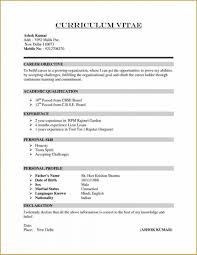 Career Focus Examples For Resume by Resume Summary Of Qualifications For Customer Service