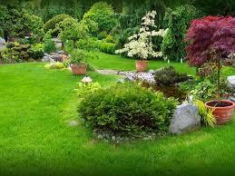 cura giardino creare un giardino montecchio emilia cavriago allestimento