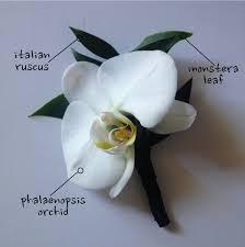 orchid boutonniere phalaenopsis orchid boutonniere jen s blossoms