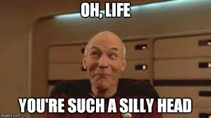 Silly Meme - picard silly meme generator imgflip