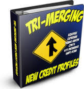 legal cpn legal credit profile number