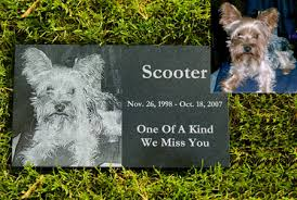 dog grave markers granite 2 black granite photo pet grave marker