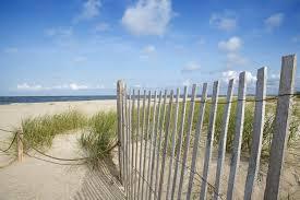 beach png