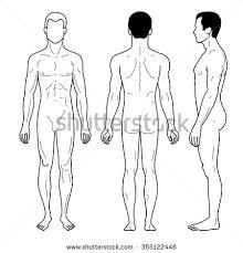 royalty free vector sketch template of men u0027s figure u2026 530360347