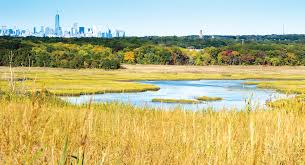greenbelt native plant center recreating nature at freshkills park