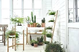plants at home plant stands indoor indoor plant stands for multiple plants indoor