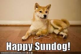 Shiba Meme - i has a hotdog shiba inu funny dog pictures dog memes