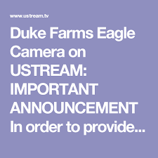 a better experience duke farms eagle on ustream important announcement in