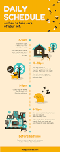 How Does Home Design App Work by Free Online Infographic Maker By Canva
