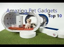Gadgets For Pets Pet Gadgets Top 10 High Tech Gadgets For Pets Most Advance